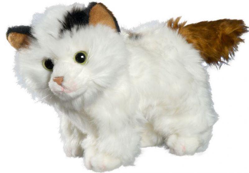 Katze_weiß